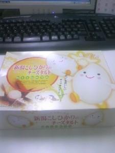 新潟土産のチーズタルトです。