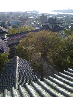 和歌山城からの景色