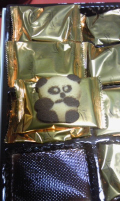 100301パンダクッキー