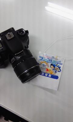 ファン感謝デー パスとカメラ