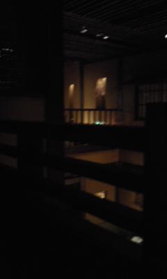 豊橋@だいこん屋1