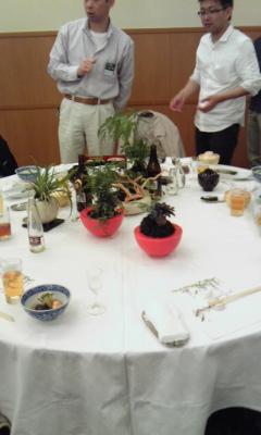 苔玉 品評会4