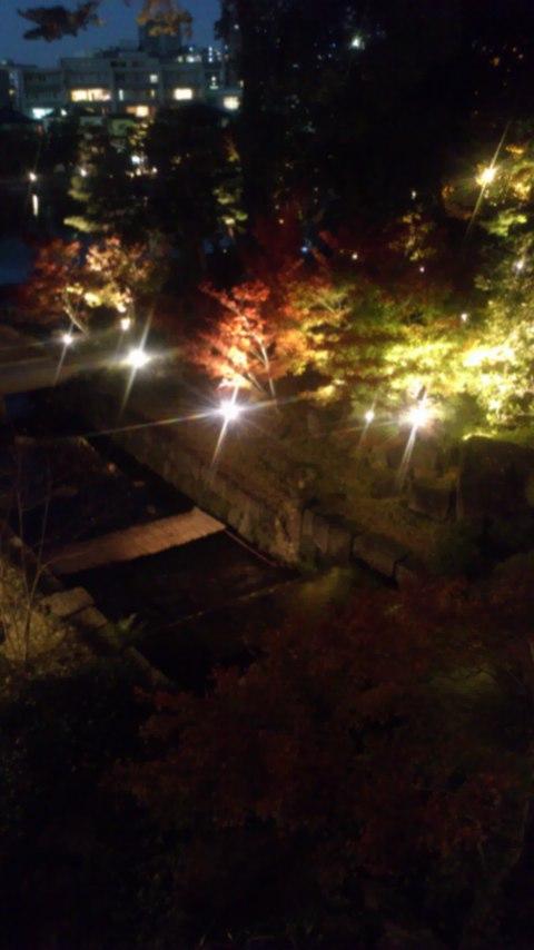 徳川園夜景1